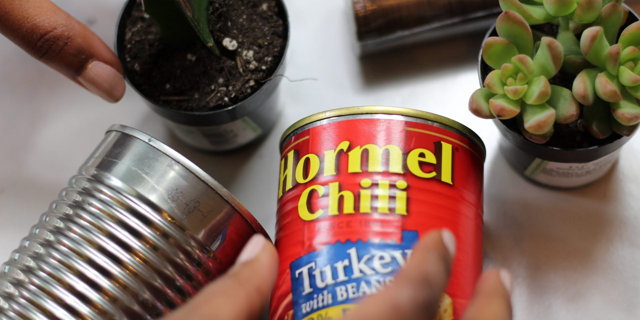 DIY Tin Can Plant Holders