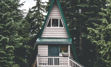 Ever Thought of Downsizing to A Tiny Home?