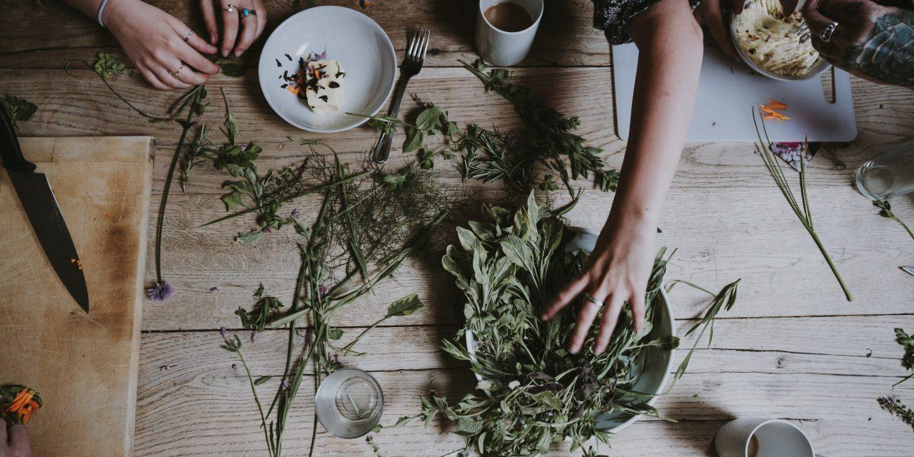How to Create Your Own Edible Garden
