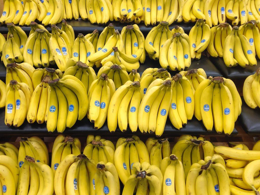 rows of yellow bananas